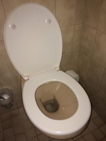 Hotel Rebstock : Schmutzige Toilette