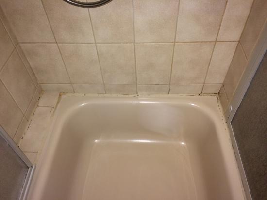 Hotel Rebstock : Schimmel in der Dusche