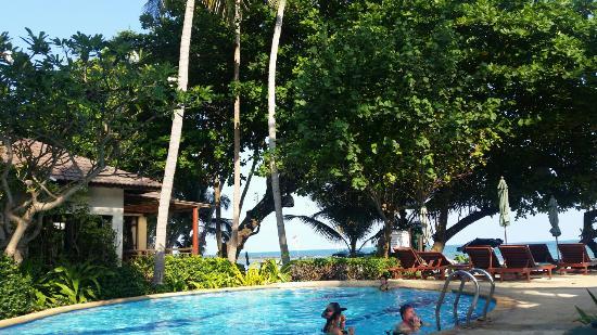 Baan Chaweng Beach Resort & Spa: IMG-1460107211892-V_large.jpg