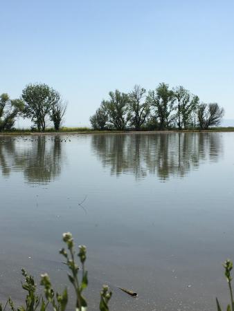 Merced National Wildlife Refuge Photo