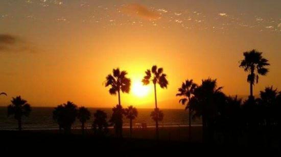Venice Breeze Suites: FB_IMG_1425723807583_large.jpg