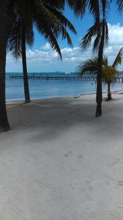 lil wisconsin in mexico picture of icebar mexico isla mujeres rh tripadvisor com