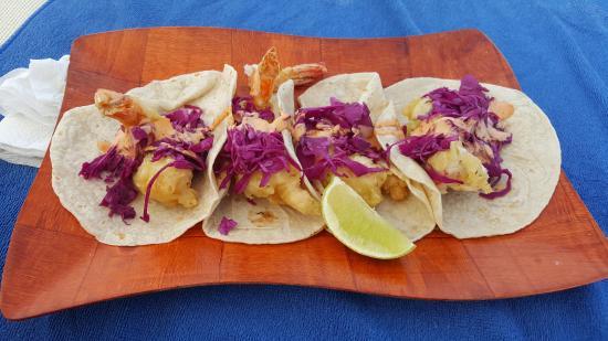 Zazil Ha : shrimp tacos