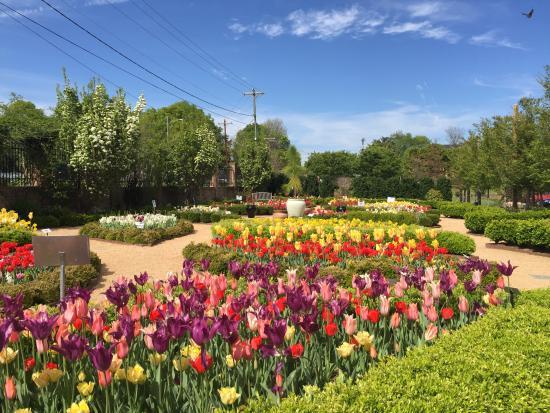 Paul J Ciener Botanical Garden Photo