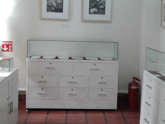 Museo Capilla Alfonsina