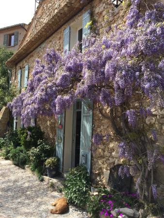 La Roque Alric, France: photo1.jpg