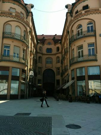 Oradea City Hall: IMG_20160413_113744_large.jpg