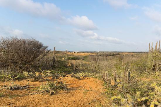 Auriga Ecolodge: Prachtig uitzicht vanaf Bara di Carta