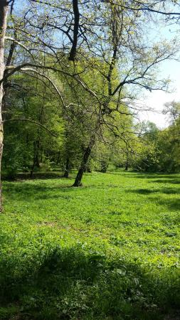 Parcul Sub Arini