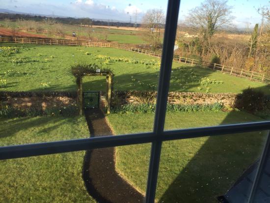 Lower Marsh Farm B & B: Idyllic farmhouse view