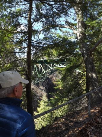 Quechee, VT: View of Gorge bridge from trail