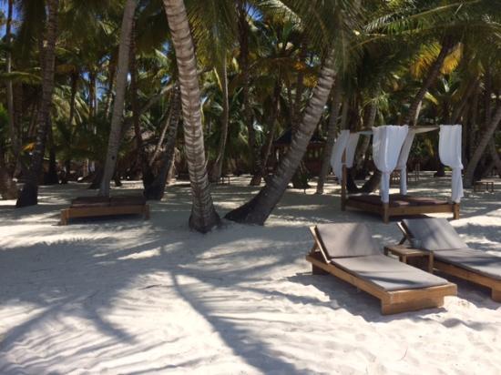 Playa Tao Beach Club & Restaurant: General beach view of Beach Club