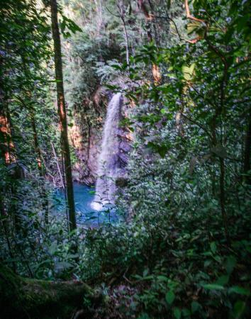 Blanchisseuse, Trinidad: View of the waterfall from above