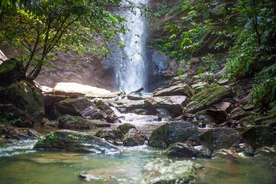 Blanchisseuse, Trinidad: Avocat Waterfall!