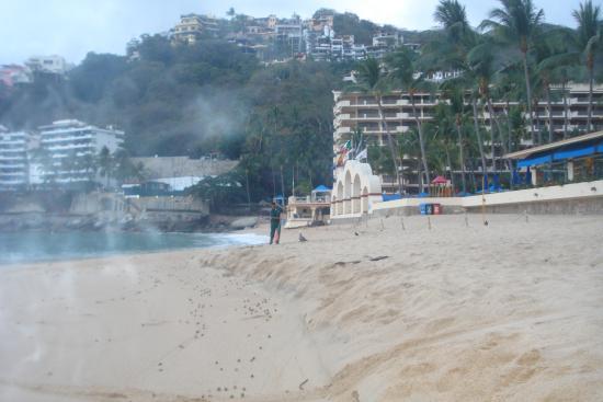 Casa Iguana Hotel: en mismaloya