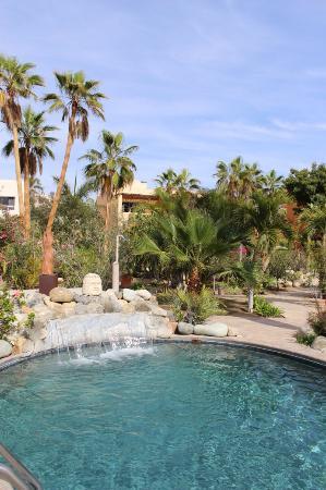 Todos Santos, México: The saltwater pool and palm gardens.