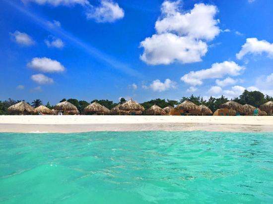 La Quinta Beach Resort Updated 2018 Prices Reviews Aruba Palm Eagle Tripadvisor