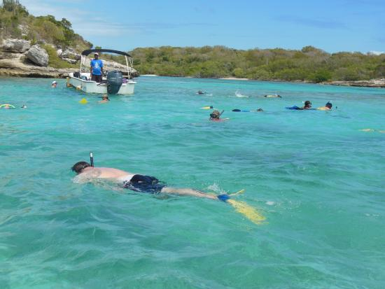 Saint Phillip Parish, Antigua: Snorkeling near Bird Island
