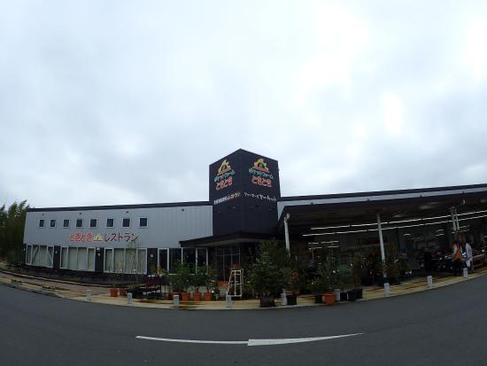 Bed and breakfast i Ibaraki-machi