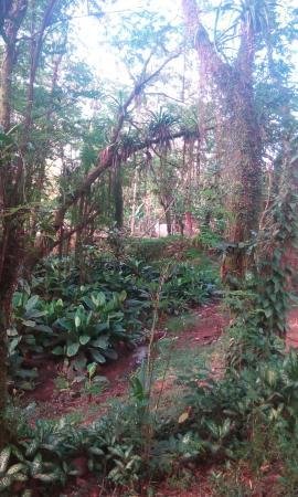 Waspam, Nicaragua: Hotel la casa de la rose..