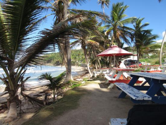 Silver Sands, Barbados: quelque part sur la côte Est de l'île, façade atlantique