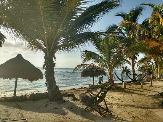 Balamku Inn on the Beach Picture