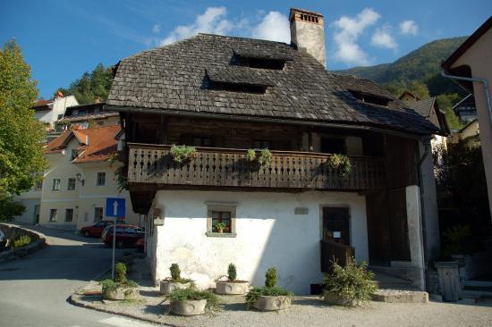 The Kurnik House