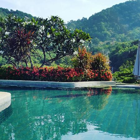 Pacific Club Resort: IMG_20160327_085258_large.jpg