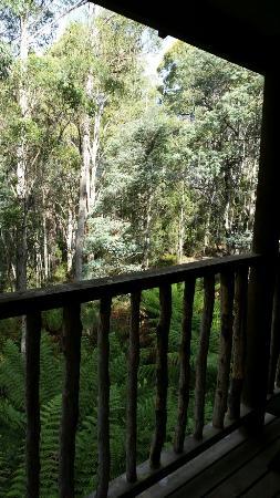 Moina, Australien: 20160411_145604_large.jpg