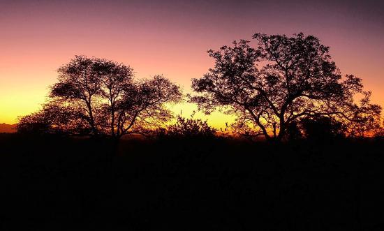 Naledi Bushcamp and Enkoveni Camp: sunset