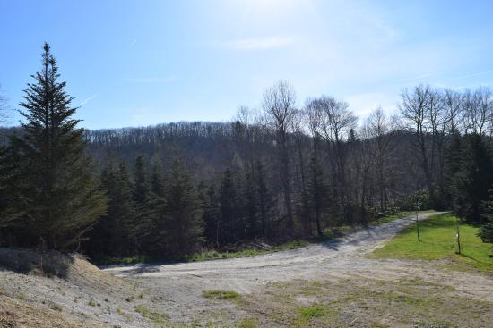 Whitetop, VA: view from our site. We were T11