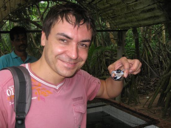 Bentota, Sri Lanka: пискарики