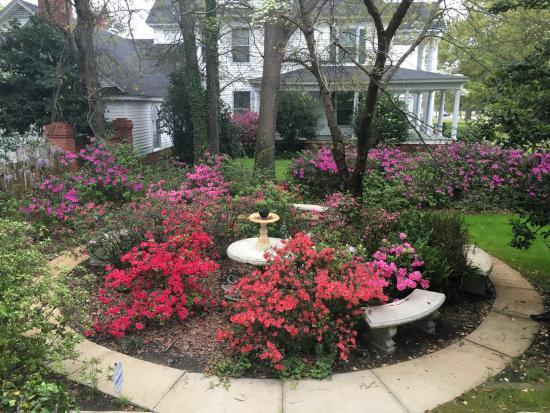 Dillon, Carolina del Sur: Garden beside the house.