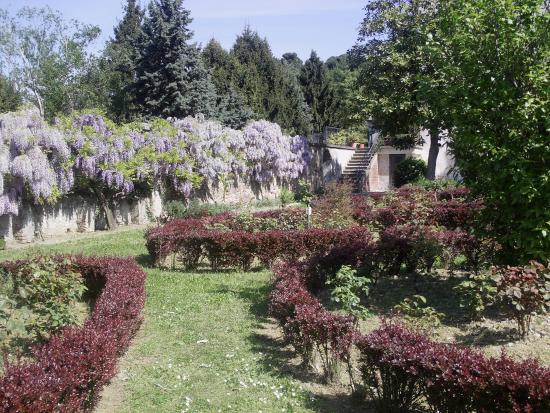Il giardino delle rose foto di l 39 oasi di cavoretto torino tripadvisor - Il giardino delle rose ...