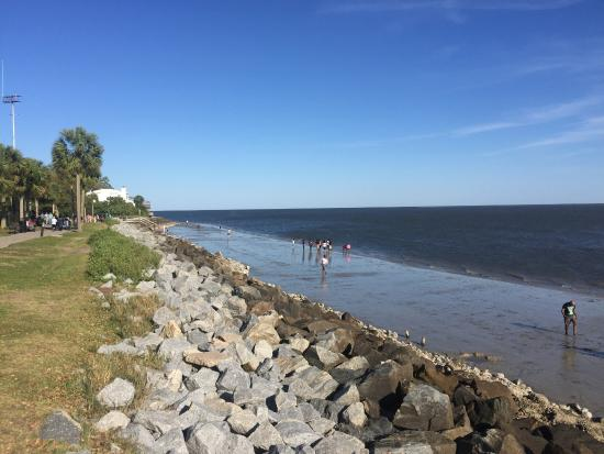 Saint Simons Inn by the Lighthouse: Local Beach