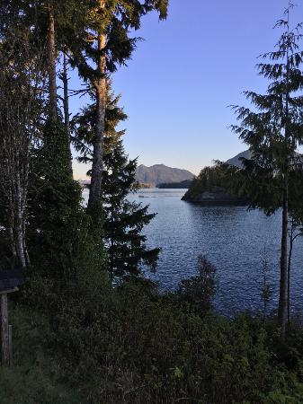 Meares Retreat Bed & Breakfast: Meares Island in the distance