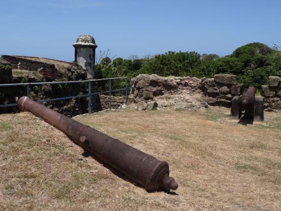 Fort San Lorenzo: Canon