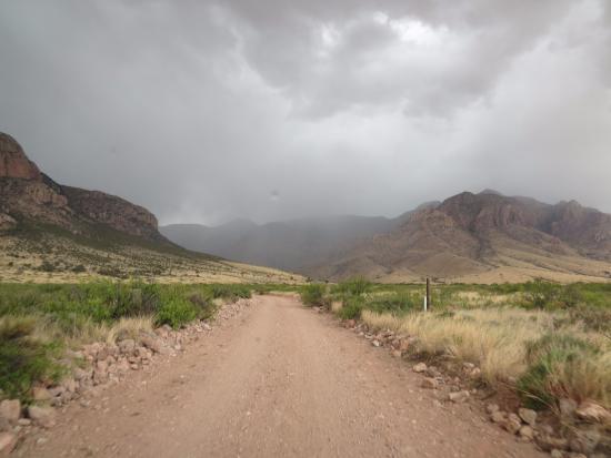 Portal, AZ: Spring showers bring May flowers----