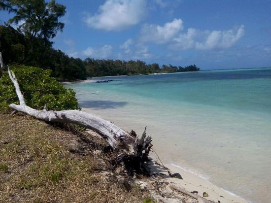 Paradisio Excursions Ile Maurice