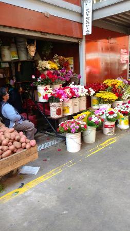 Mercado Presidente Ibanez