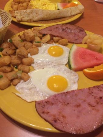 Eggstyle : photo1.jpg