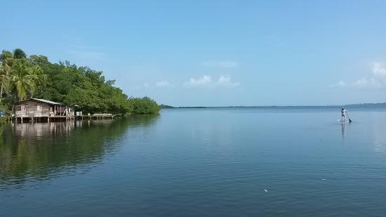 Dolphin Bay Hideaway: Sitting on the deck this is your view & bay to enjoy as you want