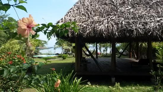 Dolphin Bay Hideaway: The yoga area or lie in the hammocks and chill out