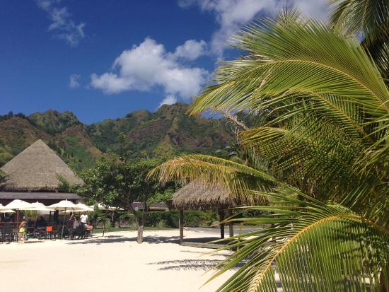 Moorea, French Polynesia: cadre exceptionnelle