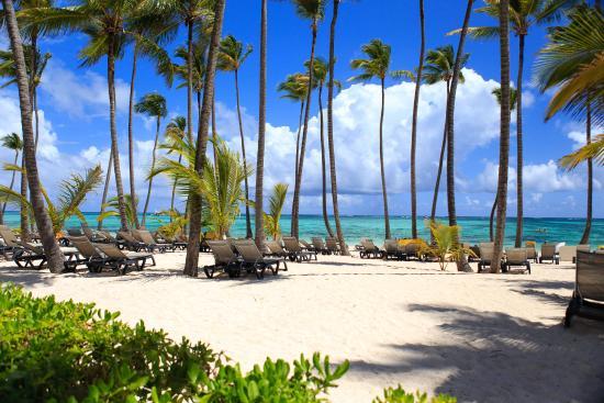 plus sky white sand beautiful trees just perfect picture of rh tripadvisor com