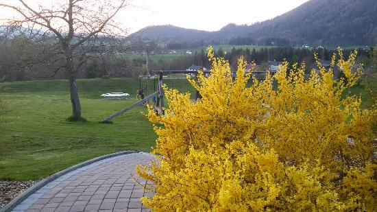 Faistenau, Αυστρία: 20160416_194315_large.jpg