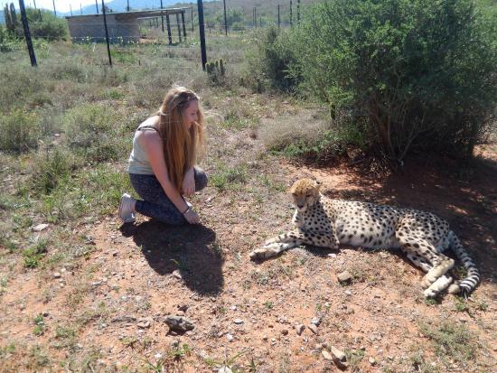 Addo, Sør-Afrika: photo0.jpg
