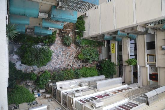 Guilin Oasis Inn : Garden inside hotel building