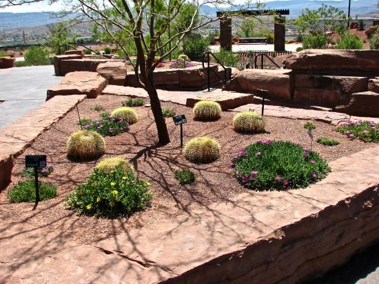 Plants Picture Of Red Hills Desert Garden St George Tripadvisor