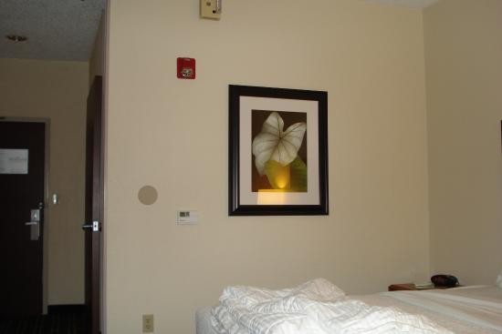 La Quinta Inn & Suites Manassas Bild
